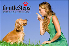 GentleSteps Training